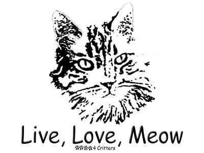 Photograph - Live Love Meow by Robyn Stacey