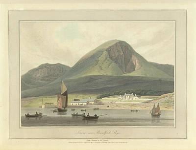 Liveras Art Print by British Library