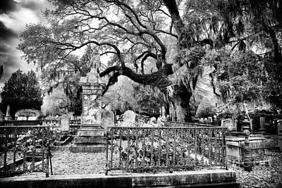 Living Cemetery Art Print by John Rizzuto
