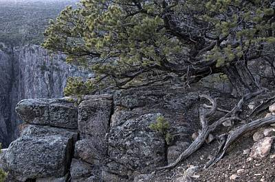 Photograph - Living On The Edge Of Abyss  by Eric Rundle