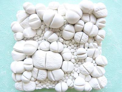 Living Stones Succulent Wall Tile Original by Lenka Kasprisin
