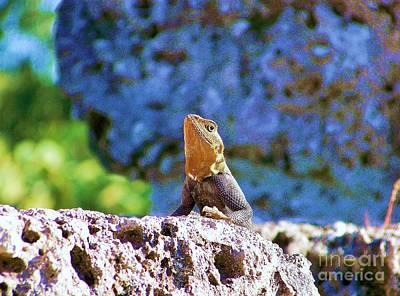 Studio Grafika Zodiac - Lizard by Chuck  Hicks