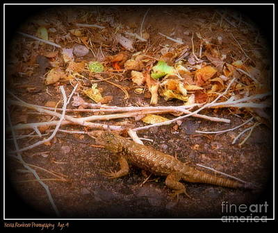 Photograph - Lizard On The Loose by Bobbee Rickard