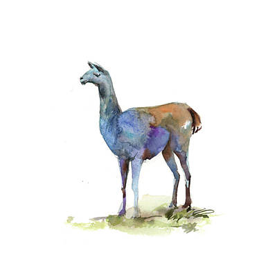 Llamas Painting - Llama I by Sophia Rodionov
