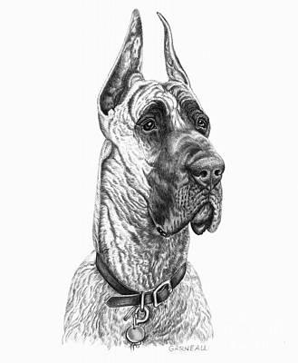 Dog Art Drawing - Lloyd by Catherine Garneau