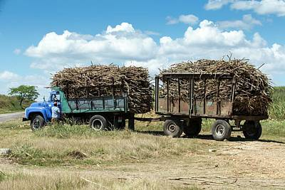 Loaded Sugar Cane Truck Cuba Art Print