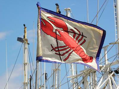 Lobster Flag At The Point Art Print by Mary Carol Williams
