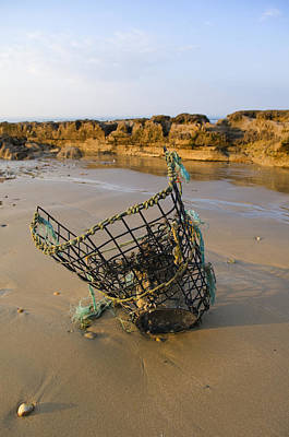 Photograph - Lobster Pot by Mick House