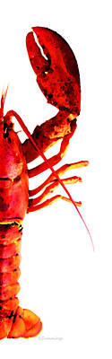 Lobster - The Right Side Print by Sharon Cummings