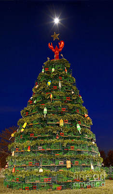 Tree Photograph - Lobster Trap Tree by Chuck Smith