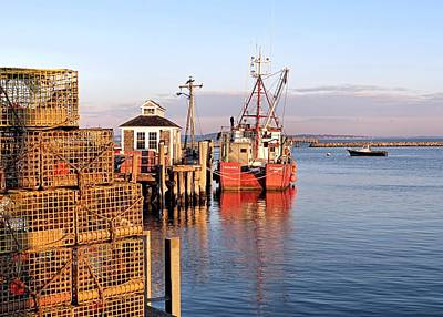 Photograph - Lobster Traps by Janice Drew