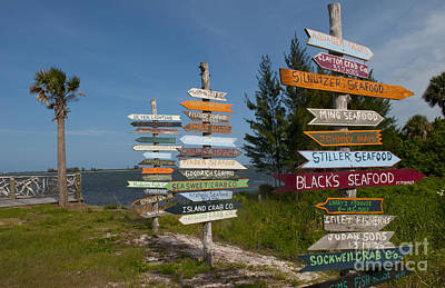 Sebastian Florida Photograph - Local Business Direction Signs by Bill Bachmann