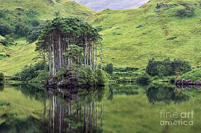 Caledonian Photograph - Loch Eilt - D002522 by Daniel Dempster