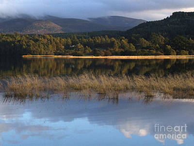 Photograph - Loch Insh - Reflections by Phil Banks