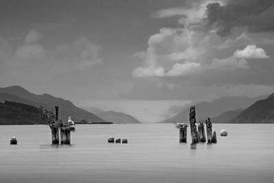 Photograph - Loch Ness by Veli Bariskan