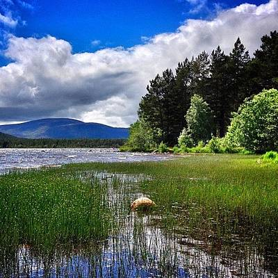 Landscapestyles Photograph - #lochmorlich #cairngorms #scotland by Colin Logie
