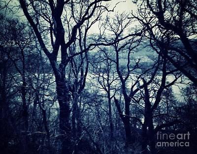 Photograph - Lochside At Loch Lomond Dawn by Joan-Violet Stretch