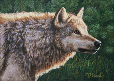 Gray Wolf Painting - Grey Wolf - Locked by Crista Forest