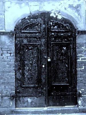 Abstract Animalia - Locked Door by Nicholas Small