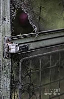 Locked Print by Roseann Petrie
