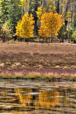 Photograph - Lockett Meadow Reflection by Tam Ryan