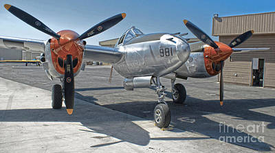 Lockheed P-38l Lightning Honey Bunny  - 01 Art Print by Gregory Dyer