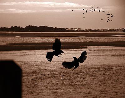 Photograph - Lockwood Folly River by Joseph Tese