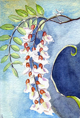 Locust Bloom Art Print by Katherine Miller