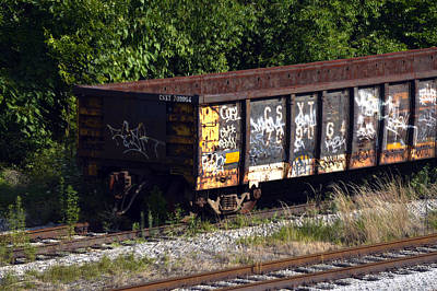 Photograph - Locust Point Gondola Graffiti by Bill Swartwout