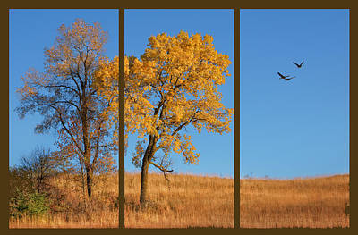 Photograph - Loess Hills Gold by Nikolyn McDonald