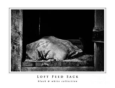 Photograph - Loft Feed Sack  Black And White Collection by Greg Jackson