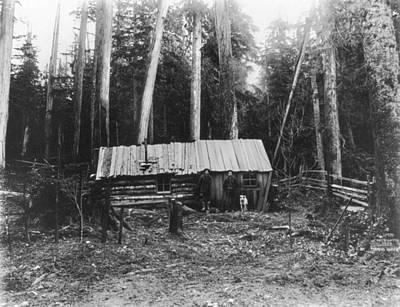 Photograph - Log Cabin, C1906 by Granger