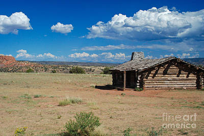 Squint Photograph - Log Cabin In New Mexico by Sonja Quintero