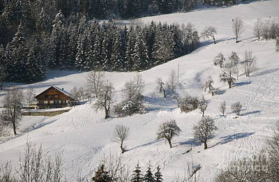 Photograph - Log Cabin In The French Alps by Louise Fahy