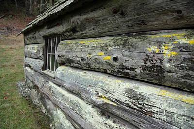 Log Cabin Side Print by Graham Foulkes