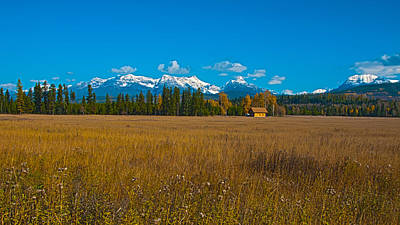 Photograph - Log Cabin Wilderness by Brenda Jacobs