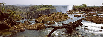 Victoria Falls Photograph - Log On The Rocks At The Top by Panoramic Images