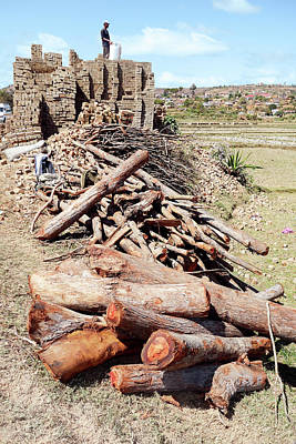 Brick Building Photograph - Log Pile And Brick Kiln by Dr P. Marazzi