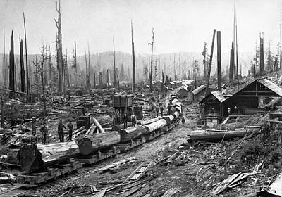 Log Tram And Logging Camp C. 1890 Art Print by Daniel Hagerman