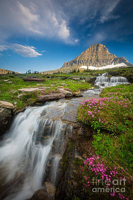 Reynolds Photograph - Logan Pass Cascades by Inge Johnsson