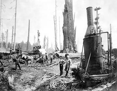 Logging In The Industrial Age C. 1880 Art Print by Daniel Hagerman
