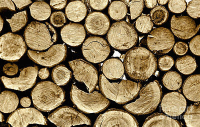 Photograph - Logs by Jeff Breiman