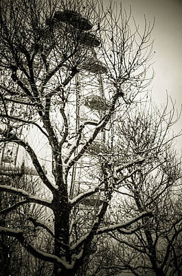 Photograph - London Eye Through Snowy Trees by Lenny Carter