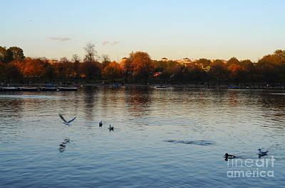 Photograph - London Lexington Park  by Haleh Mahbod
