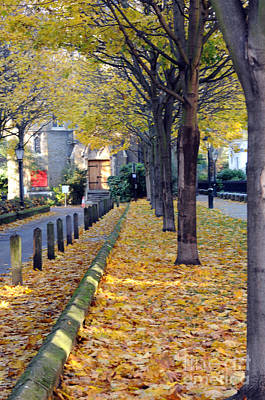 Photograph - London Street In Fall by Haleh Mahbod
