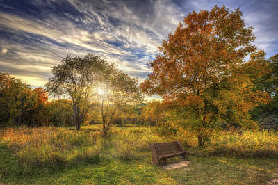 Lone Bench Under Tree - Fall Sunset - Retzer Nature Center - Waukesha Wisconsin Print by Jennifer Rondinelli Reilly - Fine Art Photography