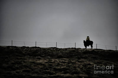 Photograph - Lone Cowboy by Donna Greene