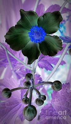 Mixed Media - Lone Flower 1 by Chalet Roome-Rigdon