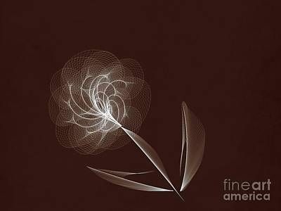 Computer Generated Flower Photograph - Lone Flower by Tom Gari Gallery-Three-Photography