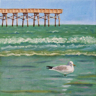 Lone Gull A-piers Art Print
